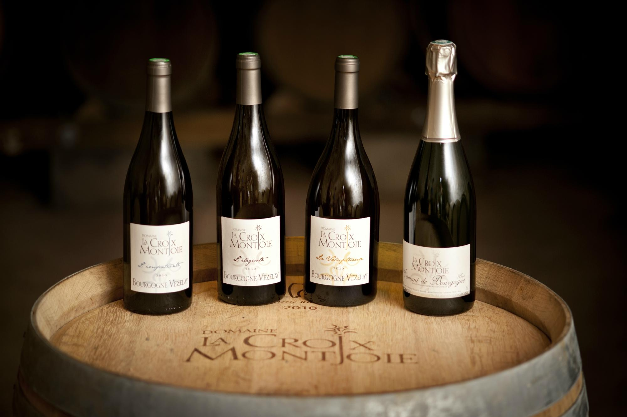 french wine industry Throughout its history, the french wine industry has been shaped by the influences of both external and internal forces over several centuries, a number of factors contributed to the prominent influence.